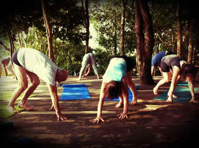 yoga class-animal walk1