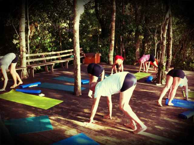 yoga class-animal walk2