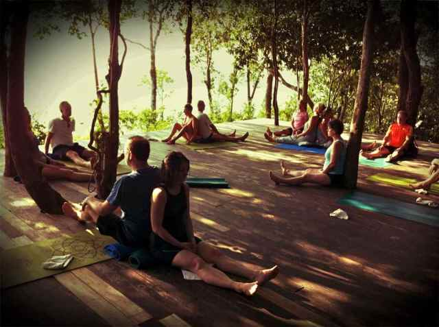 yoga class-animal walk3