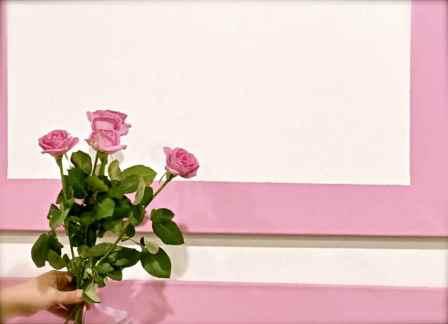 pink roses@GMG