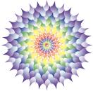 CSL Lotus logo