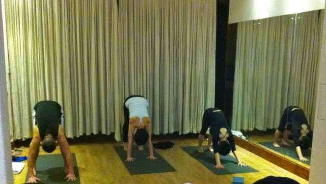 CQ Yoga WS-downdogs