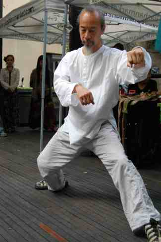 kungfu sifu